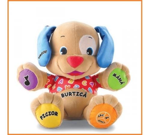 Jucării pentru Copii - Magazin Online de Jucării ieftine in Chisinau Baby-Boom in Moldova fisher price bgy27 catelusi (ro)