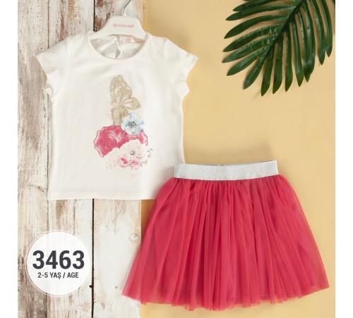 Одежда для малышей в Молдове babyrose 3463 Комплект из 2 единиц (2-3-4-5 лет.) в асс.