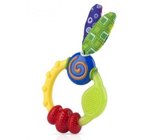 "Jucării pentru Copii - Magazin Online de Jucării ieftine in Chisinau Baby-Boom in Moldova nuby id632 inel gingival ""multitexturat"""