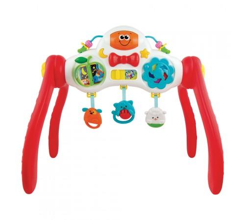 color baby 44729 Интерактивный игровой центр