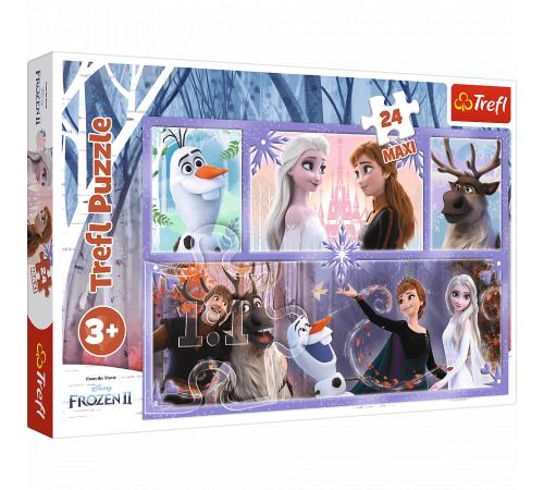 """Jucării pentru Copii - Magazin Online de Jucării ieftine in Chisinau Baby-Boom in Moldova trefl 14345 maxi puzzle """"o lume plină de magie. frozen 2"""""""" (24 el.)"""